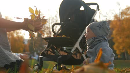 contentamento : Young mother sitting on the grass and playing with her little baby son. Playing with autumn leaves. Throwing leaves in the air Stock Footage