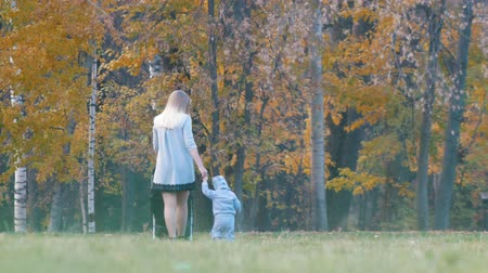 contentamento : Young mother with a baby carriage, her little baby walking near her holding hands. Autumn park