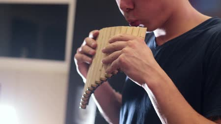 fife : A guy playing on instrument. Wooden pipe Stock Footage