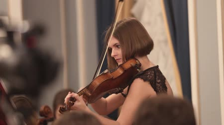 виолончель : Chamber orchestra. A young woman playing violin
