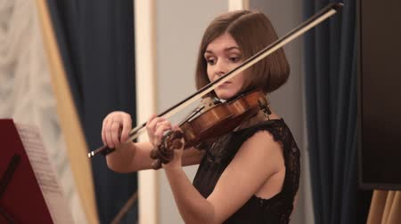 cuarteto : Chamber orchestra. A young woman playing violin during a performance. Archivo de Video