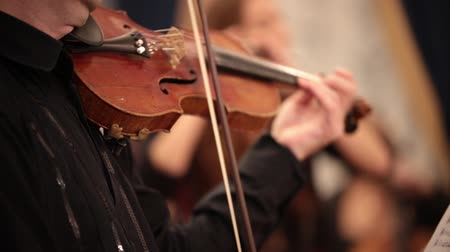 виолончель : Chamber orchestra. A person passionaly plays violin. Hands close up