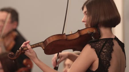 виолончель : Chamber orchestra. A young woman concentrated playing violin during a performance. Side angle.