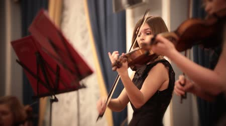 houslista : Chamber orchestra. A young woman playing violin during a musical performance. Dostupné videozáznamy