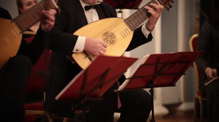 houslista : Chamber orchestra. A man playing lute on a musical performance