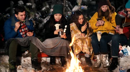 palivové dříví : Group of young people in the winter forest sitting by the fire. People sitting in their phones and taking pictures