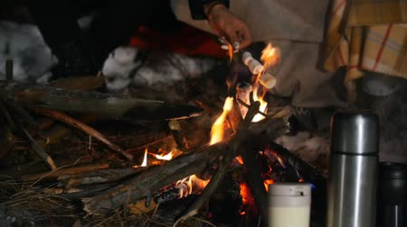 palivové dříví : Group of friends having a good time in the woods. Bonfire in the winter forest. Night time. Frying marshmallow. Thermocouples stand in the snow. Slow motion