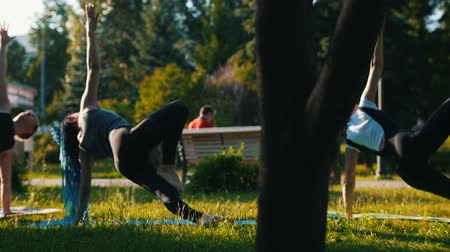 сильный : A groop of two young attractive women doing yoga exercises with a man in the park - One woman has long blue dreadlocks