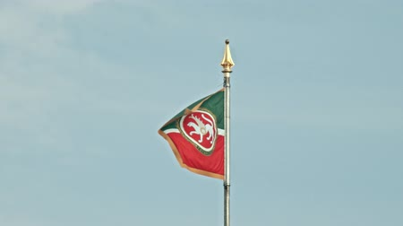democracia : 18 AUGUST 2019 KAZAN, RUSSIA: Flag of Tatarstan waving at wind