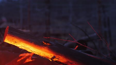 arame : A red light from the bonfire reflecting on the wood in the forest - an iron wire on the background