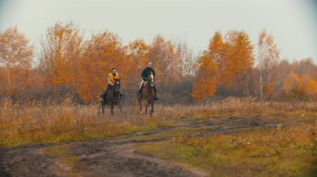 cavalos : Two women on the horses backs running on the autumn field - golden landscape Vídeos