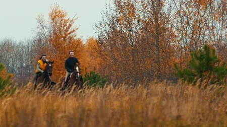вести : Two women on the horses backs running on the field - autumn golden time