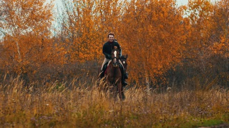 вести : Two women on the horses backs having a good time running on the field Стоковые видеозаписи