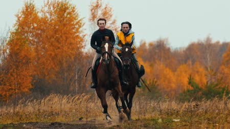 harness : Two women on the horses backs having a good time running on the field - a dog following them Stock Footage