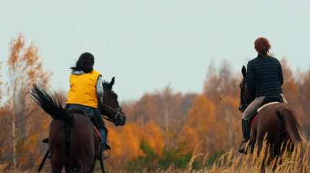 kutyák : Two women riding horses on the autumn field - a dog following them Stock mozgókép