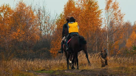 kutyák : Two women riding horses in the autumn nature - a dog following them Stock mozgókép
