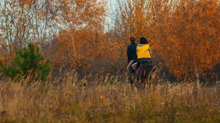 kutyák : Two women riding horses in the autumn nature