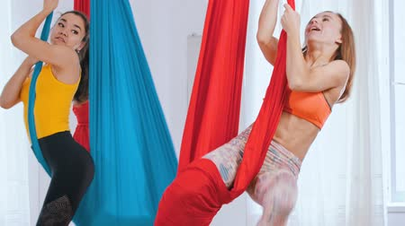 hängematte : Two women having an aero yoga training in the studio - hanging in the hammocks Videos