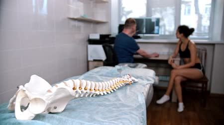 chiropraxie : Chiropractic treatment - the doctor inspecting the young woman before the session - model of the human spine