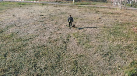 çoban köpeği : A man dog handler with his german shepherd dog walking on the field