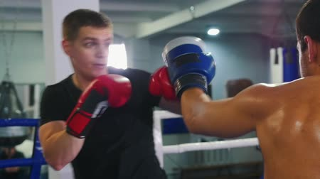 bokser : Box training - two man having a fight - protecting one from another Stockvideo