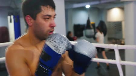 bokser : Boxing in the gym indoors - two men having a training fight Stockvideo