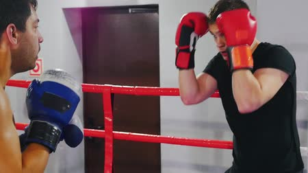 combativo : Boxing - two men having a training fight in the gym