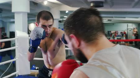 sportolók : Boxing indoors - two sweaty men having an aggressive fight on the boxing ring - attack and protect
