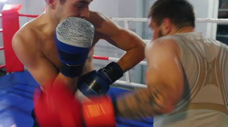 combativo : Boxing training - two athletic men having an aggressive fight on the ring Stock Footage