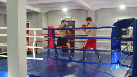 tekmeleme : Boxing training in the gym - two athletic men having a training fight on the boxing ring