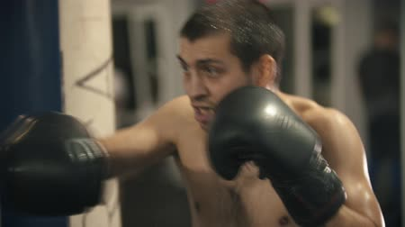 combativo : Box training - a sweaty man training - shadow fighting
