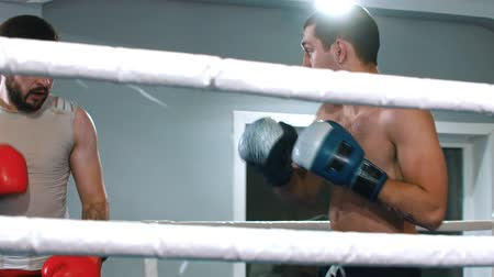 combativo : BOX - men are finishing their fight on the ring Stock Footage