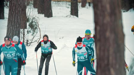 narciarz : RUSSIA, KAZAN 08-02-2020: Skiing competition - adult sportsmen skiing in the forest with an effort