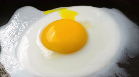 saturado : Cooking Fried eggs. Process of Preparation of One Fried Egg. Time Lapse. Vídeos