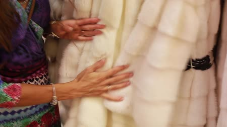 fox : female hands touching the coat Stock Footage