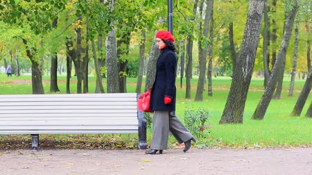 Beautiful woman with a bag in autumn park. Stock Footage