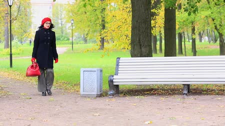 Beautiful woman with a bag, going to the bench in autumn park from left side Stock Footage
