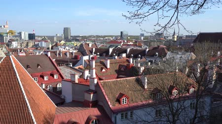 Amazing aerial Tallinn view over the old town, cathedral and narrow streets surrounded by orange roofs.