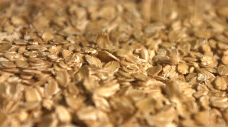 yulaf ezmesi : Oatmeal. 2 Shots. Slow motion. Close-up. Horizontal and vertical pan. Stok Video