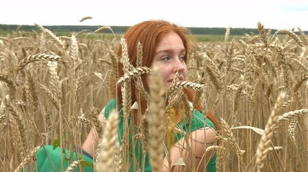 bezmotorové létání : Walk on the wheat field. Slow motion. A lovely red-haired girl is sitting in a field of ripe wheat.