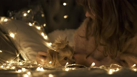 Young woman hugs and kisses her Yorkshire Terrier dog surrounded Christmas lights on bed