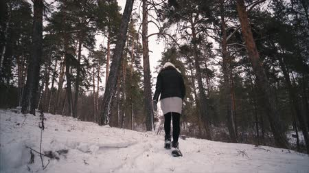 Young female model walking in the winter forest in the snow among the trees.