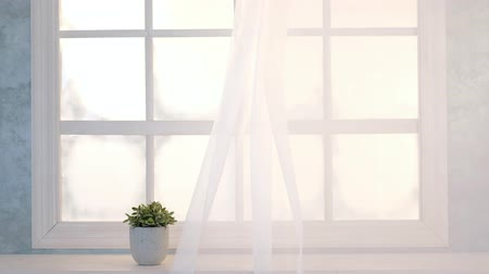 estrutura : Bright interior, window with curtains, white window sill, room Vídeos