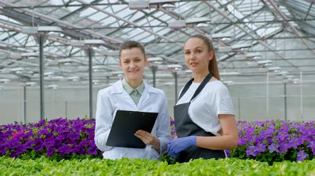 examinar : Two women in white coats and black aprons. Scientists, biologists or agronomists examine and analyze flowers and green plants in the greenhouse. Write data to the tablet. Selection and care of plants.