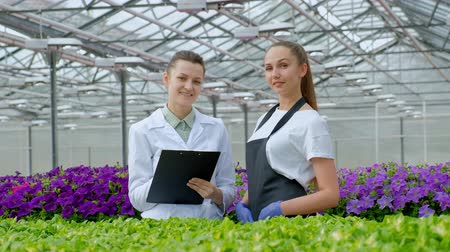 vágólapra : Two women in white coats and black aprons. Scientists, biologists or agronomists examine and analyze flowers and green plants in the greenhouse. Write data to the tablet. Selection and care of plants.