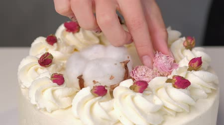 camomila : Woman cook decorates white cake with fresh flowers. Close-up of the hands of a pastry chef decorator. Vídeos