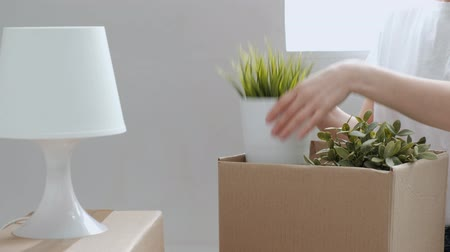 tehcir : A woman in jeans and a white T-shirt carries things and green plants from cardboard boxes. Closeup of female hands. The concept of moving to a new home. Stok Video