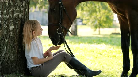 kanca : Girl teenager jockey sits in a green clearing under a tree. Feeds a horse an apple and strokes it. Love for horses.