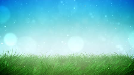temporadas : Sunny grass loop Stock Footage