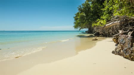 clima tropical : Wild sand beach with trees and rocks
